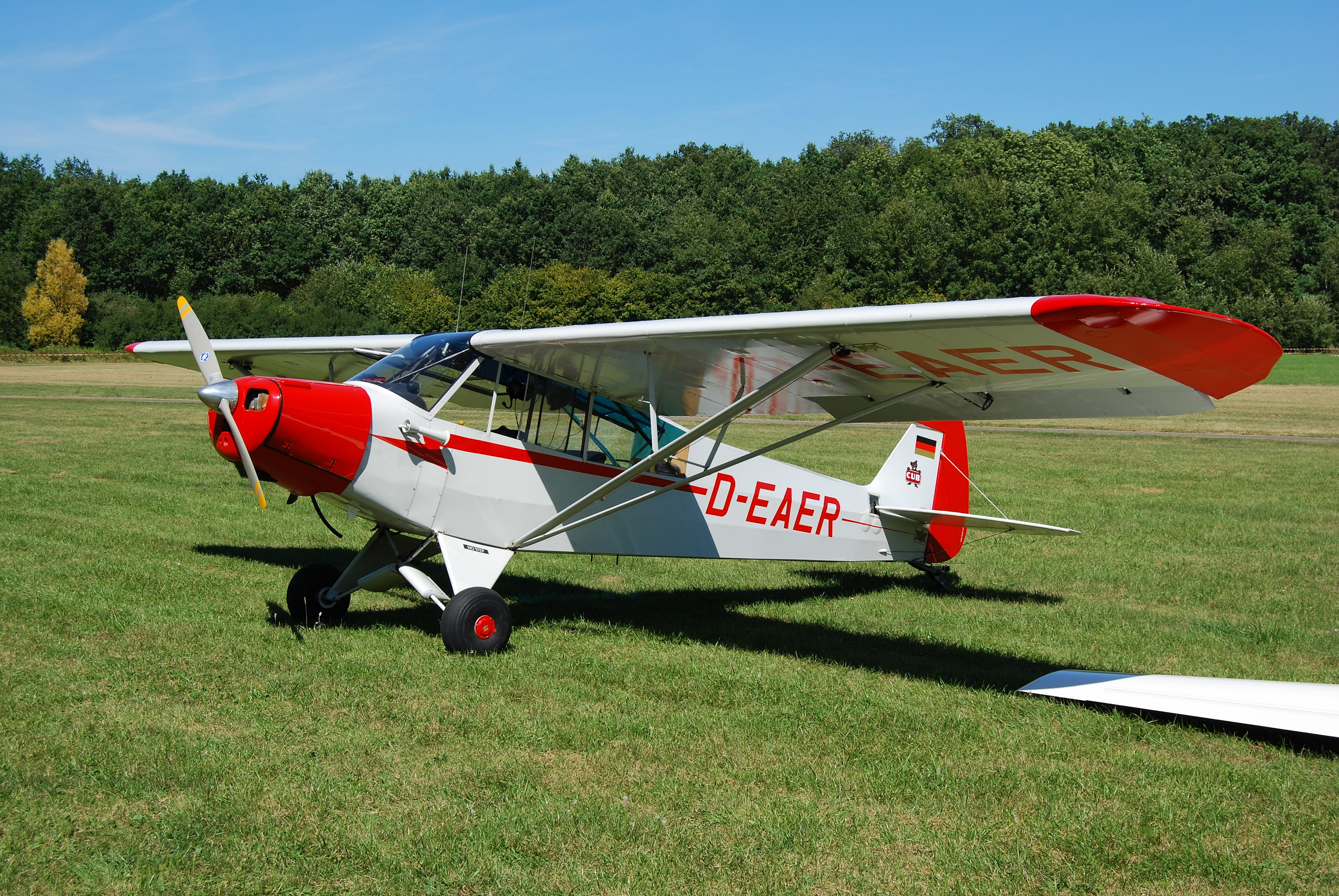 greatplanes com with Piper Cub Purzuit on Ts 21 Gold Glaenzend 100 Ml besides Watch besides Amati lingua ita in addition Multiplex Cockpit SX7 Einzelsender Mit Touchscreen in addition 20151 Gpma1260 Greatplanes Proud Bird Ef1 Racer Sport Arf.