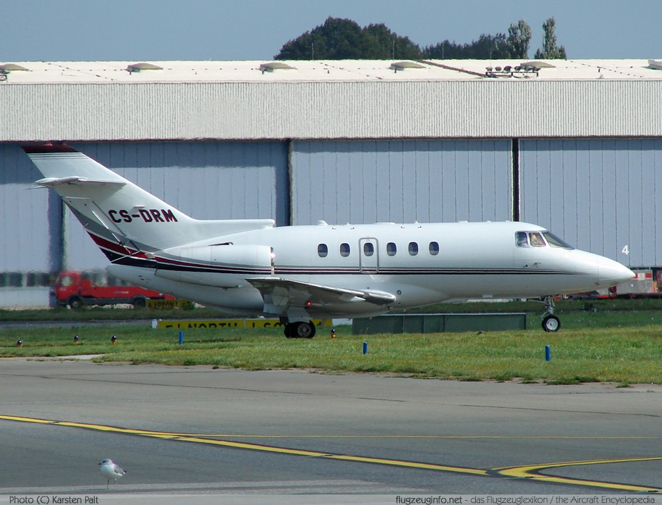 Raytheon Hawker 800 & British Aerospace HS-125-700 #6